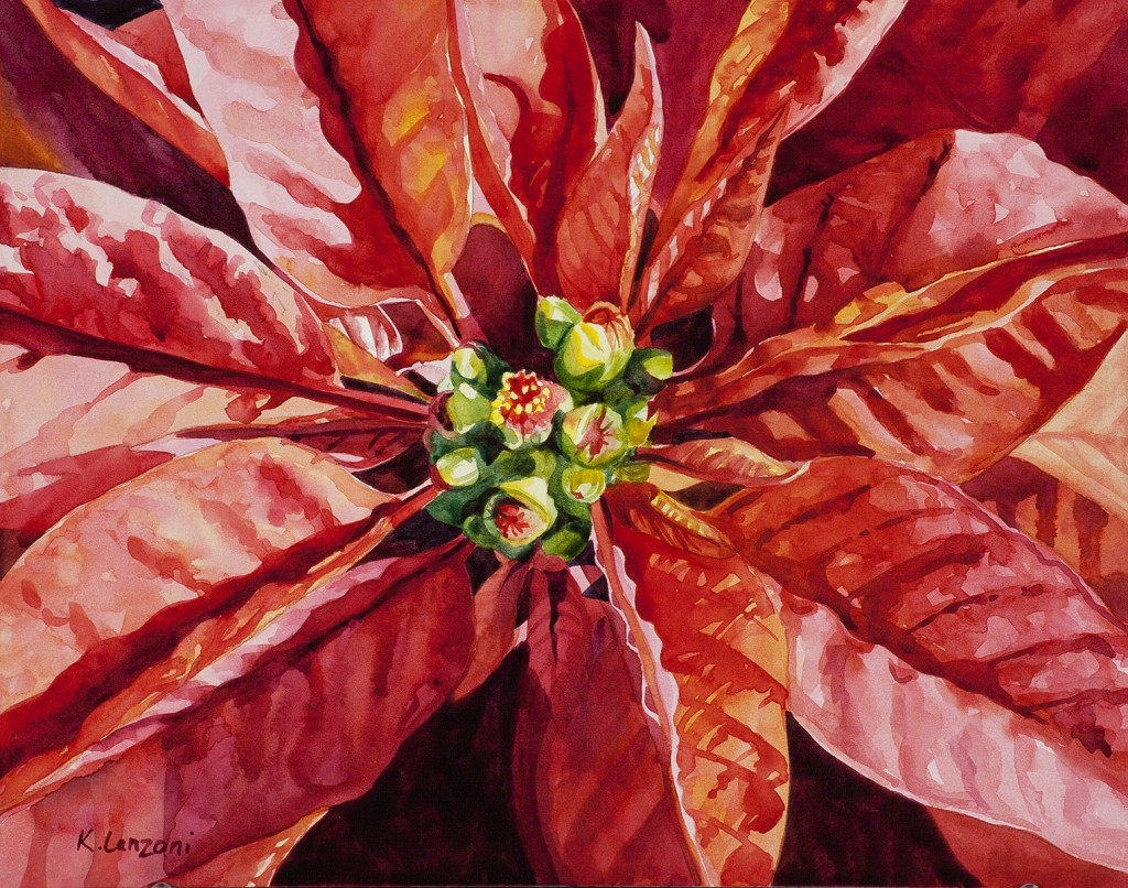 "Poinsettia 14"" x 11"" original watercolor - giclee available"