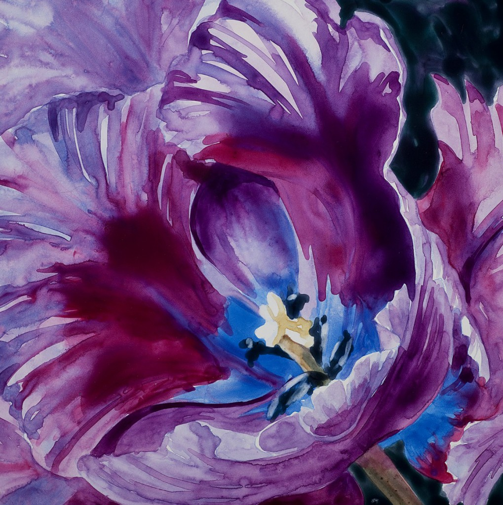 "Purple Tulip 6"" x 6"" original watercolor"