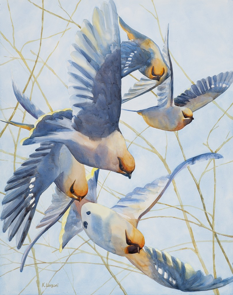 "Waxwings in Flight 29"" x 23"" original watercolor - giclee available"