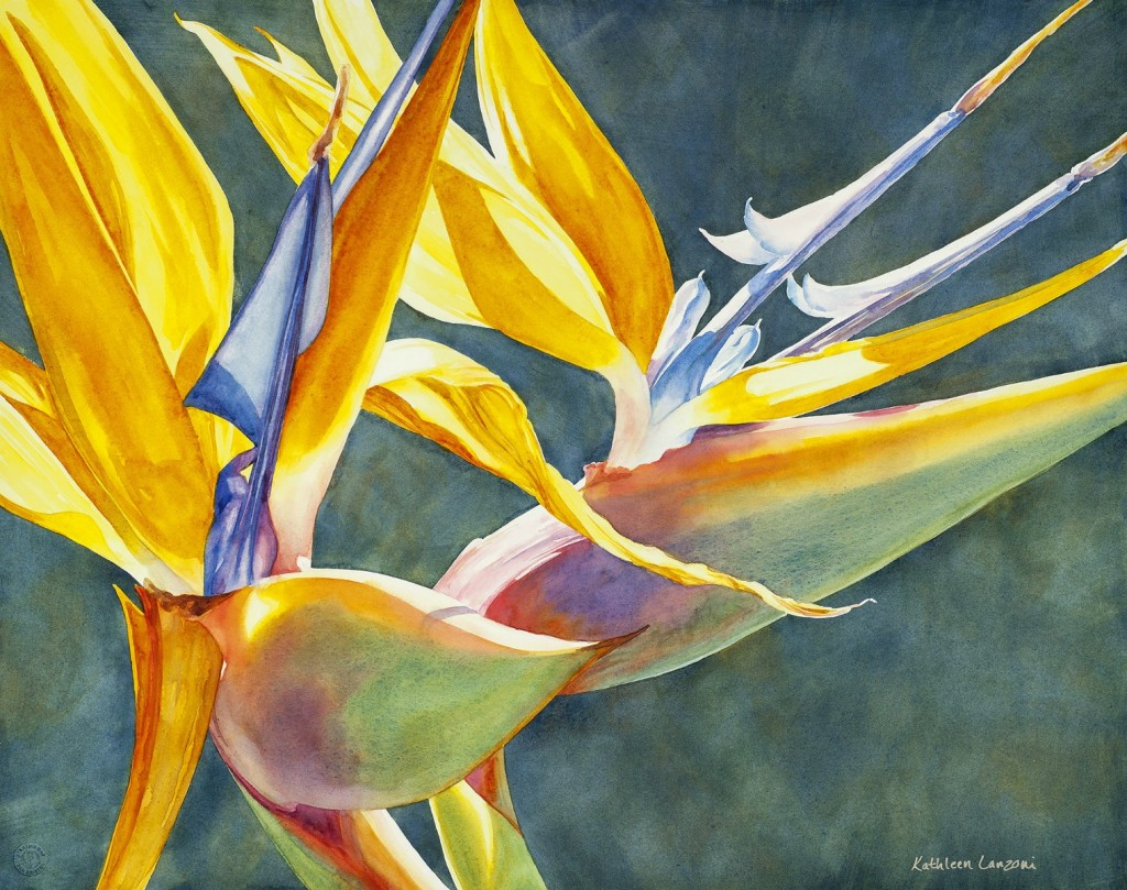"""Bird of Paradise II 29"""" x 23"""" original watercolor - giclee available"""