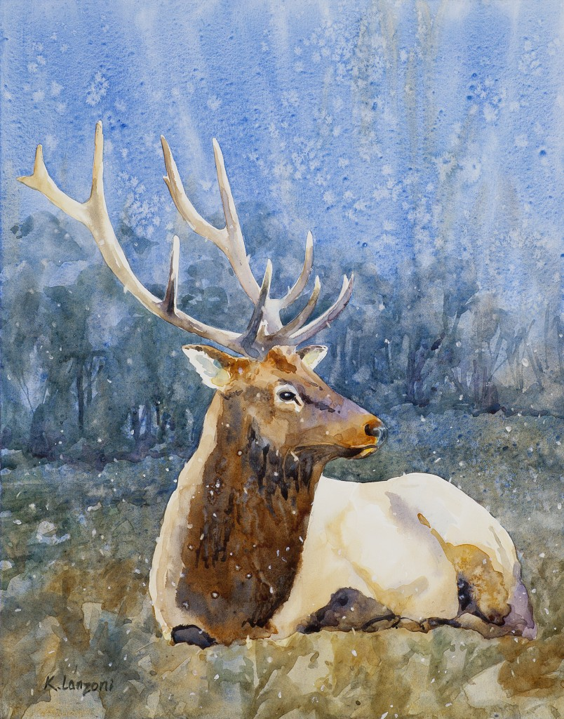 "Bull Elk 11"" x 14"" original watercolor - giclee available"